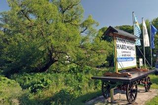 Hartlmuehle_Camping_011.jpg